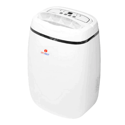 CD-12L mini electric dehumidifier for RVs and yacht.